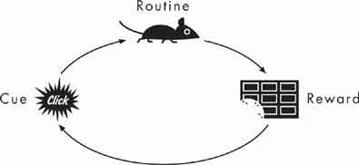 The power of habit: the habit loop