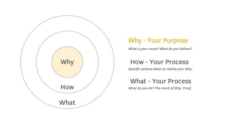 start with why summary how what why